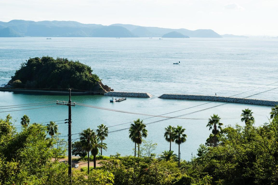 טיול ליפן חוף