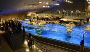Tokyo-Sumida Aquarium