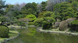 Tokyo-Koishikawa Botanical Garden