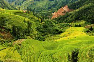 istock_vietnam