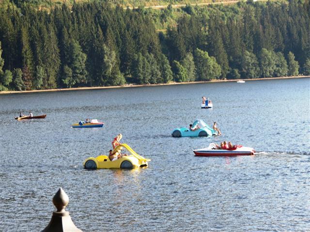 הכי כיף זה לקפוץ למים באמצע האגם. סירות פדאלים באגם טיטיזי, היער השחור, גרמניה